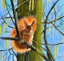 Das Eichhörchen by Heidi Schmitt-Lermann