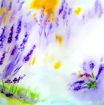 Lavendeltraum by Maria-Anna  Ziehr