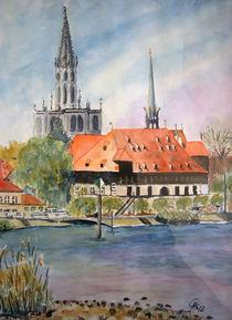 Konzil und Münster von Christine  Hamm