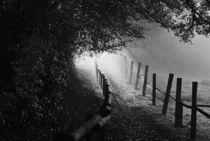 'Nebel' by Barbara Keichel Barbara Keichel