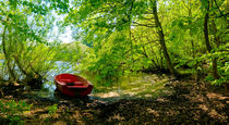 The Red Boat by Keld Bach