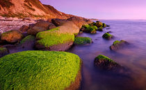 Mossy Rocks on the Beach by Keld Bach