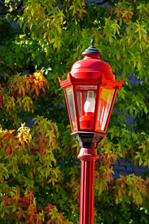 RED LANTERN AND AUTUMN LEAVES  by John Mitchell