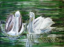 Pelikane by Heidi Schmitt-Lermann