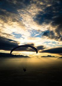 Into The Light by spotcatch-net-photography