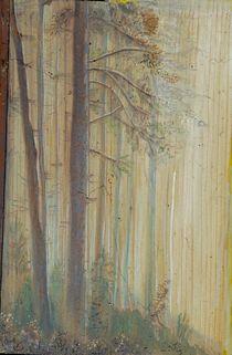 Waldrand im November by Heidi Schmitt-Lermann