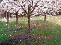 Apfelbaumblüten by Heidi Schmitt-Lermann