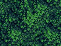 Abstract – Green Birds In Leaves by David Dehner