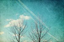 Daydreamer by AD DESIGN Photo + PhotoArt