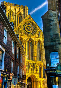Rose Window  York Minster by tkphotography