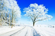 Winterpainting by Nature by Paul Artner