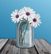 White and Purple Daisy Mason Jar Blue von Amy Sagan