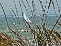 Blick aufs Meer by laubfrosch