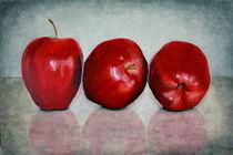 Stilleben mit Äpfeln by Andrea Meyer