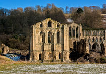 Rievaulx Abbey by tkphotography