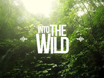 Into the wild von Julien LAGARDÈRE